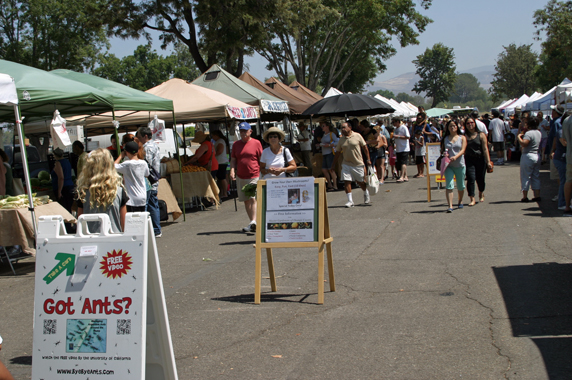 Farmers Market at OC Great Park in Irvine