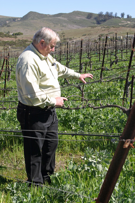 Co-owner, Steve Pepe, giving us an overview of how Clos Pepe grows their grapes.